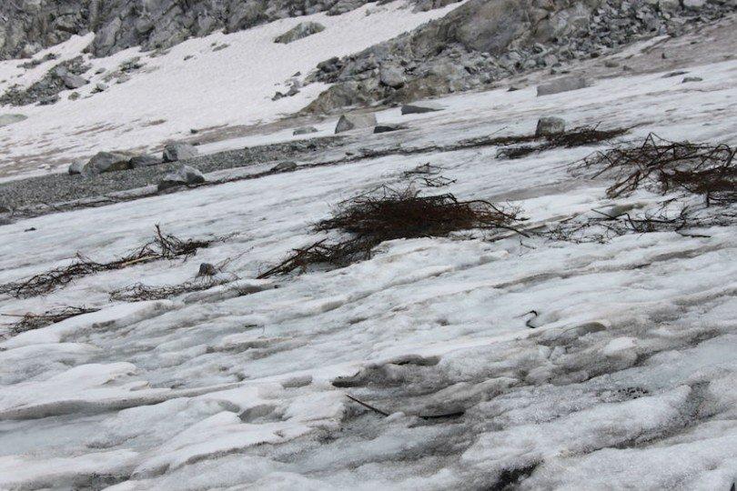 filo spinato sul ghiacciaio presena ti amo trentino