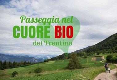 cammina-grestana-passeggiata-nel-cuore-bio-del-Trentino
